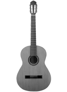 Classical / Acoustic Guitar
