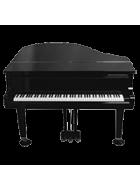 Klavier / Keyboard